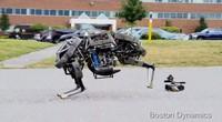 [Vídeo] El robot que galopa