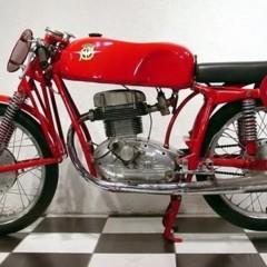 Foto 4 de 6 de la galería caferacer en Motorpasion Moto