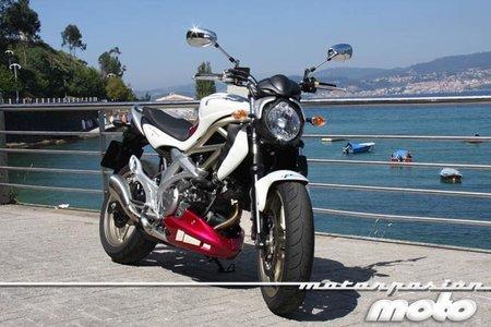 Suzuki Gladius 650