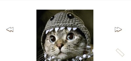 Los gatos más famosos de Instagram cobran vida en una web que es tan genial como inquietante