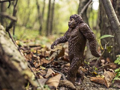 El cerebro y los testículos: Eso es lo que (más) nos separa de los neandertales