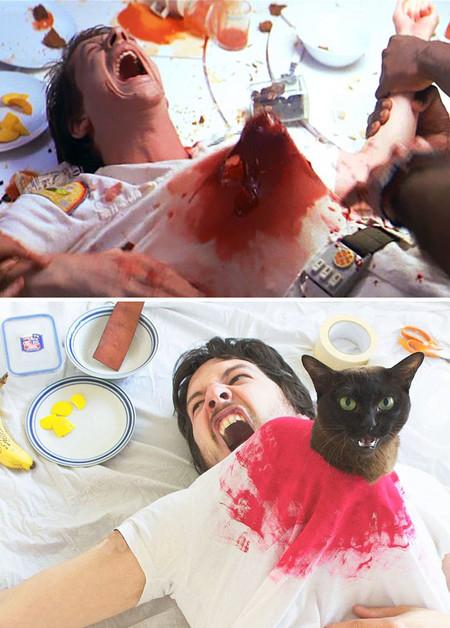 Movie Cats 4