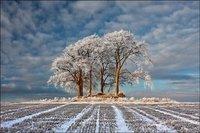 Robert Fulton, el mejor fotógrafo de paisajes de 2011