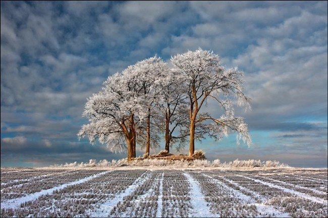 winter field de robert fulton Landscape Photographer of the Year