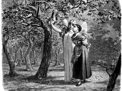 Facebook sacaría una seria basada en 'La doncella sin manos'