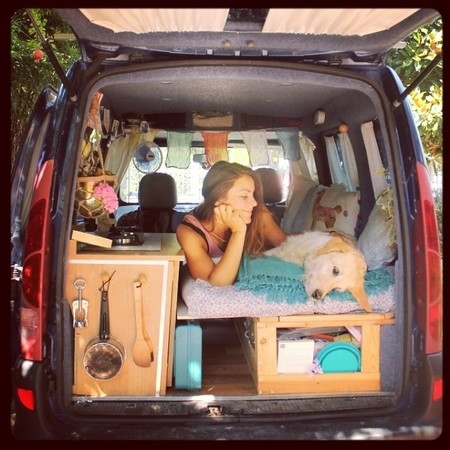 pam the van camioneta vuelta al mundo perro