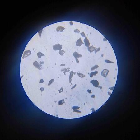 Lunar Simulant