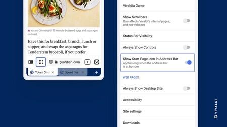 Vivaldi Browser Startpage Setting