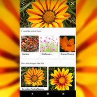 Microsoft estrena un buscador visual a lo Google Lens para iOS y Android
