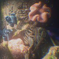 Uncharted 4 oculta un curioso easter-egg en el que aparece uno de los Chasqueadores de The Last of Us