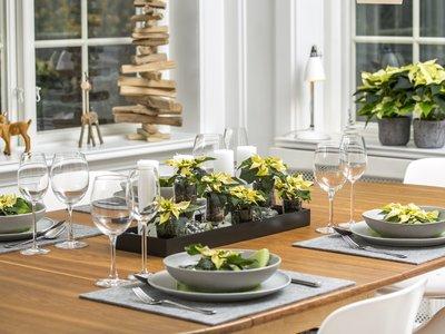¿Clásico o nórdico? Elige el estilo que prefieras para decorar tu mesa con poinsettias en Navidad