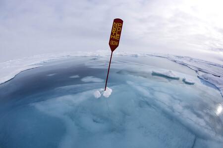 La emergencia climática protagoniza las llamativas fotos científicas ganadoras del concurso RPS Science Photographer of the Year