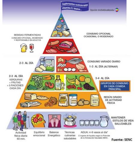 Nuevas recomendaciones de la pirámide alimentaria de la SENC 2015
