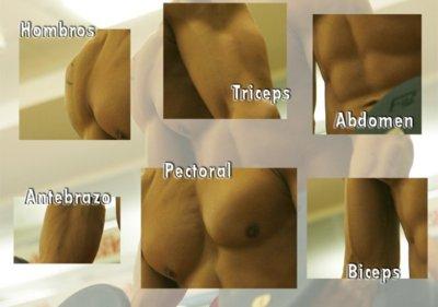 Resultado de la parte del cuerpo masculino favorita (1ª Parte)