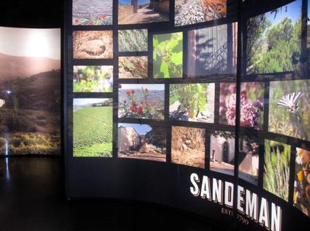 Visita Sandeman