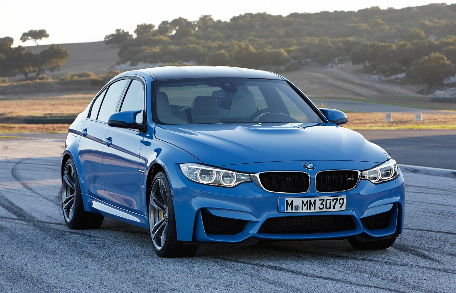 Foto de BMW M3 2014 (9/13)