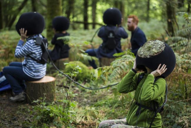 Ver el bosque a través de los ojos de un animal es posible con Realidad Virtual y Mossy