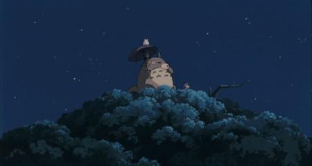 Totoro 5