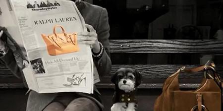 Ralph Lauren y su proyecto solidario The Dog Walk