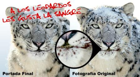¿Demasiado sangriento para la caja de Snow Leopard?