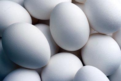Técnicas básicas de cocina : Cocinando huevos (II)