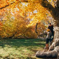 Cinco hoteles para una perfecta escapada romántica este otoño en España