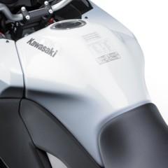 Foto 11 de 24 de la galería kawasaki-versys-1000-detalles en Motorpasion Moto