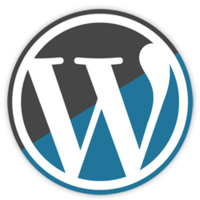 Wordpress 2.8.5, actualización de seguridad