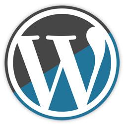 Wordpress 2.8.5, actualización de seguridad
