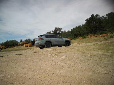 Sacamos partido de los modos de conducción del híbrido Toyota RAV4 hybrid AWD-i