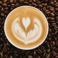 Los bebedores de café diario tienen huesos más fuertes, según un nuevo estudio