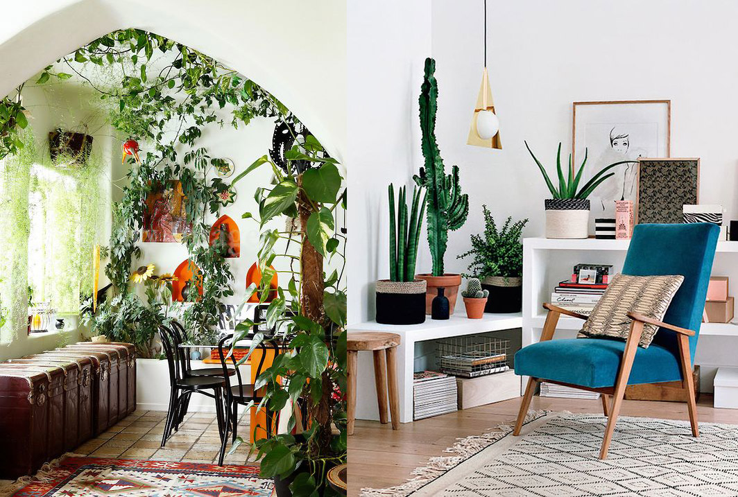 17 ideas para decorar tu sala de estar con plantas en esta for Decorar jardines con plantas
