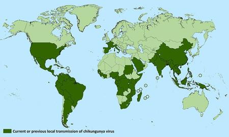 El chikunguña NO se ha instalado España: bienvenidos a un mundo en el que las enfermedades tropicales ya no son tropicales