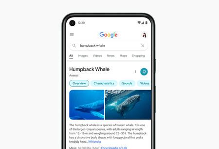 El Buscador de Google comienza a activar el desplazamiento continuo en móviles