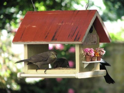 Foto de Vrubel, encantadoras casas de pájaros con encanto (2/6)