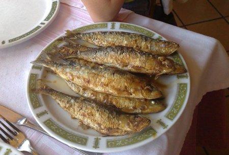 Los pescados agrupados según su contenido en grasa