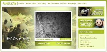 Ver a los animales del zoo de San Diego en directo