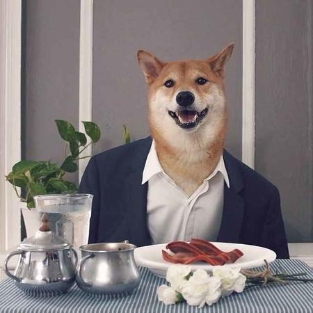 En El Nuevo Ano Chino Dedicado Al Perro Recordamos Los Mejores Looks De Nuestro Favorito Mensweardog 06
