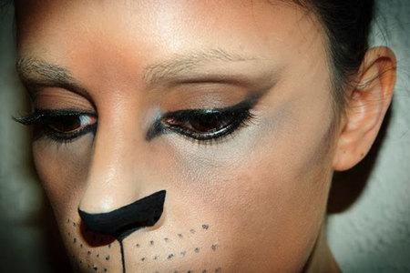 Maquillaje de carnaval voy de gata