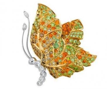 Papillon Bloom