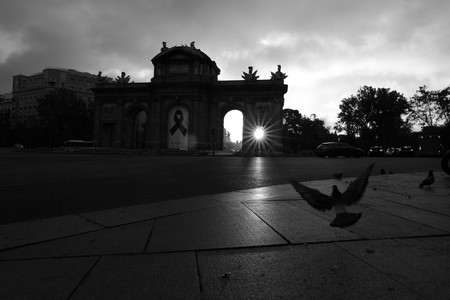 'Otros habitantes', cuando las calles de Madrid cambiaron de dueño por culpa de una pandemia, por Javier Aranburu