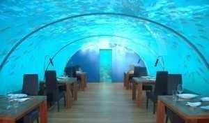 Con vistas submarinas
