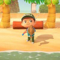 Animal Crossing: New Horizons: lista con todos los peces de octubre
