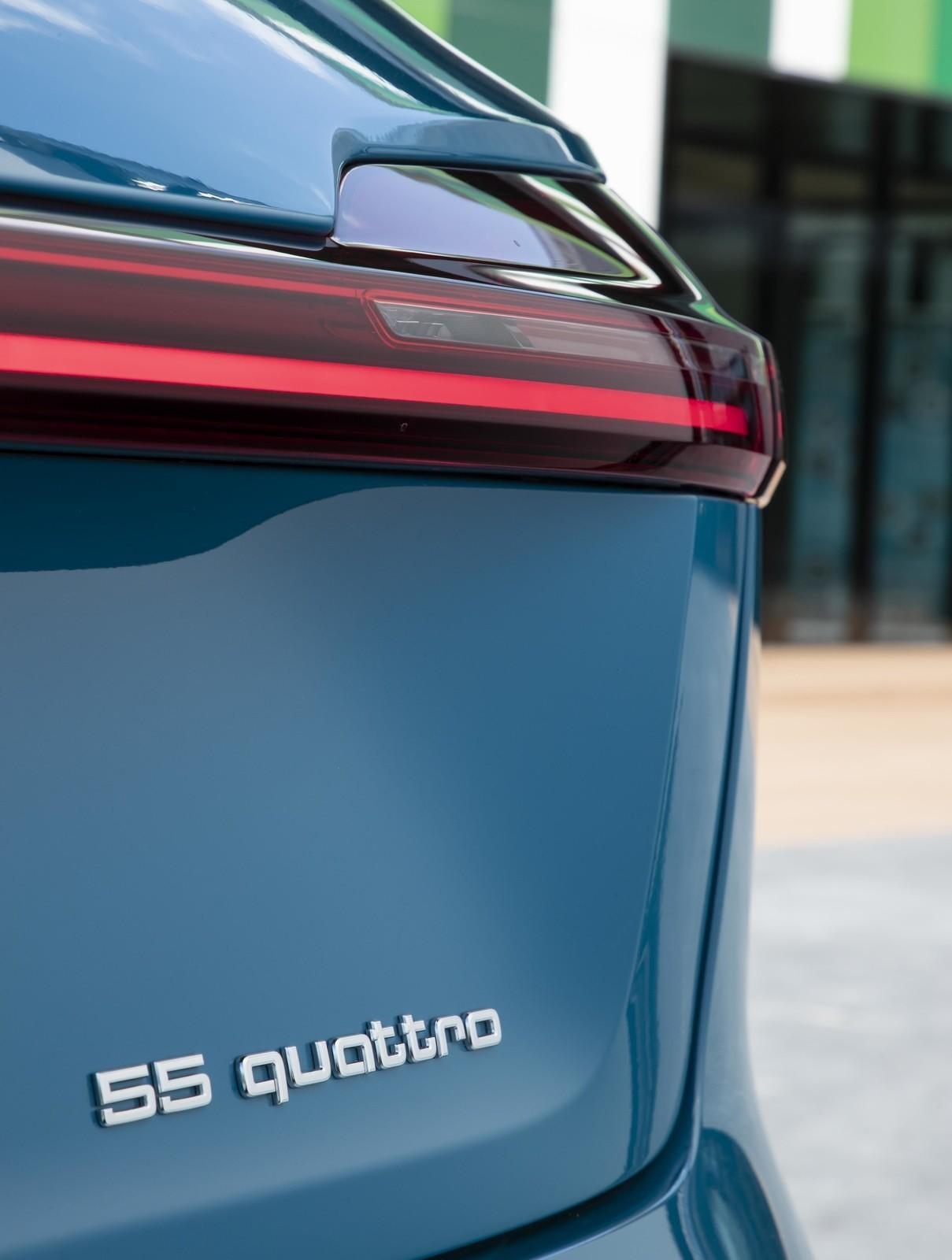 Foto de Audi e-tron (62/111)