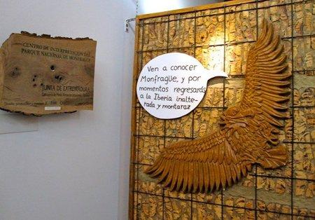 Centro Monfragüe