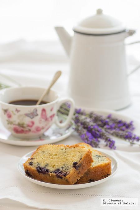Paseo por la gastronomía de la red: recetas para disfrutar de los mejores arándanos azules