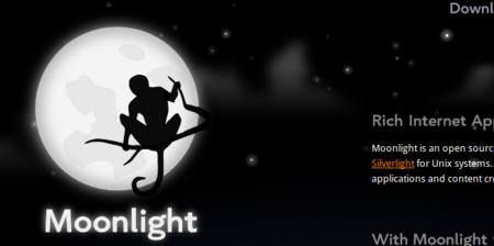 Xamarin abandona el desarrollo de Moonlight