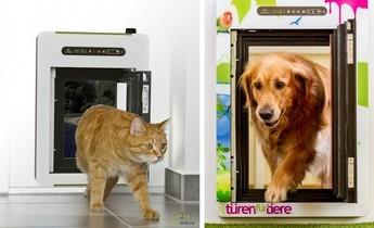 Las nuevas puertas inteligentes de Petwalk harán feliz a tu mascota