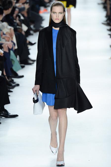 Foto de Christian Dior colección Otoño-Invierno 2014/2015 (12/47)