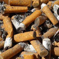 Colillas de cigarro que se convierten en papel, un estudiante de la UNAM ha descubierto el proceso para hacerlo